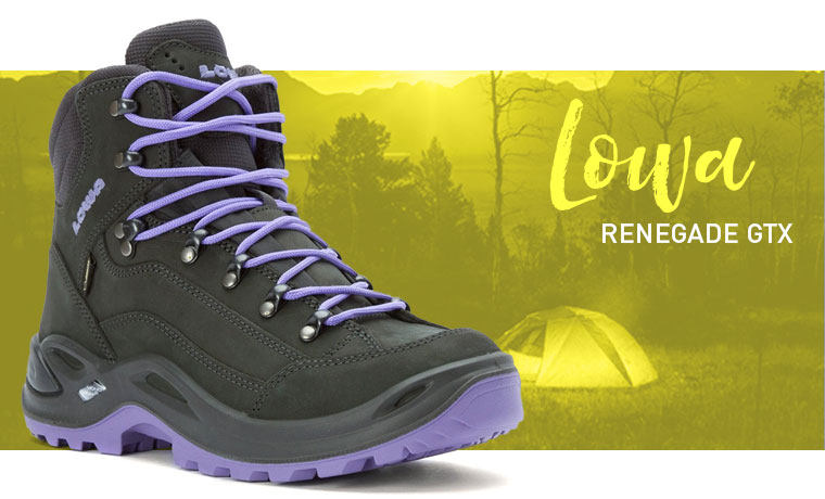 Lowa Renegade GTX hiking boot image