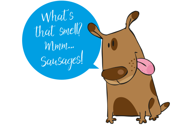 Dog smelling sausages