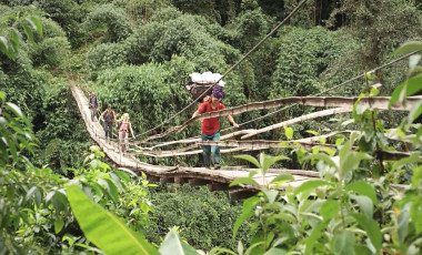 Trekkers crossing a jungle bridge
