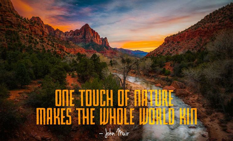 One touch of nature makes the whole world kin – john Muir