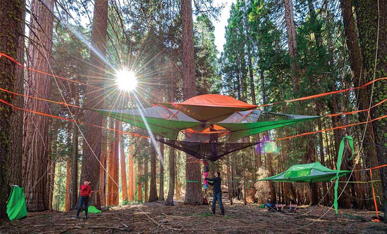 Tentsile in the forest - amazing tents