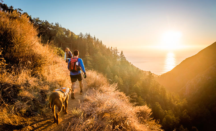 Hikers with a dog with a sea view