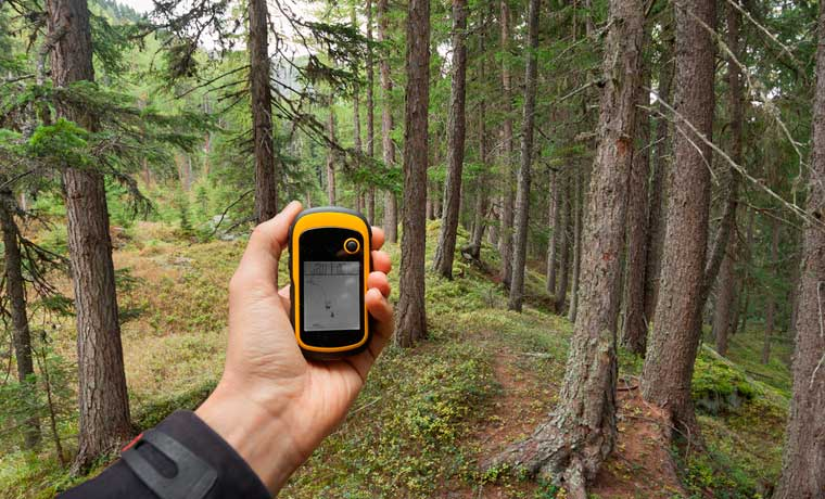Using the best hiking GPS in the forest