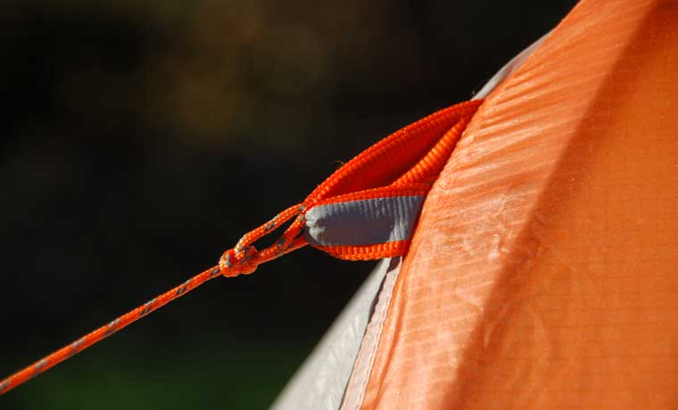 Guyline of tent with reflective tag