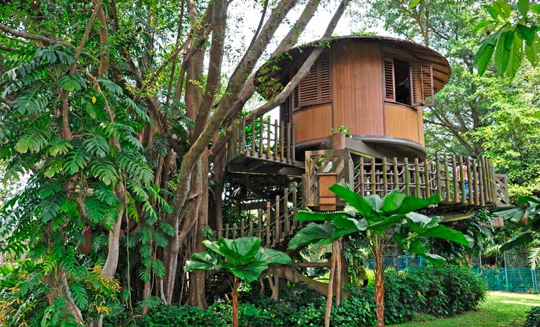 Treehouse glamping resort