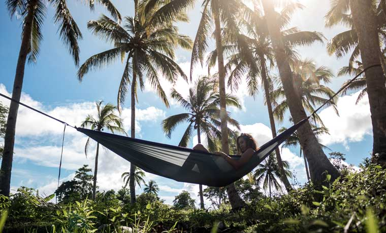 Hammock in palm trees