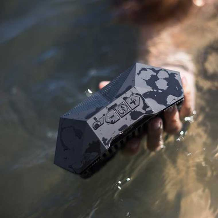 Turtle shell speaker in the water