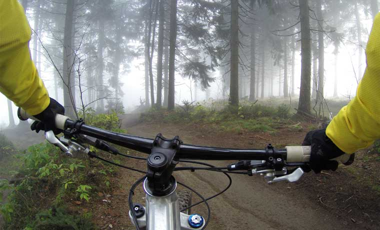 Mountain biker on a woodland trail
