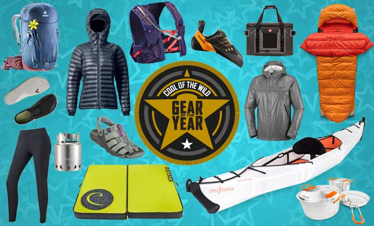 Gear of the year 2019